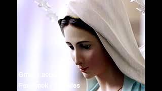 يا مريم جئت أحييك   ماجدة الرومي