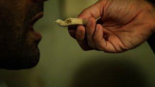 السيد المسيح خبز الحياة