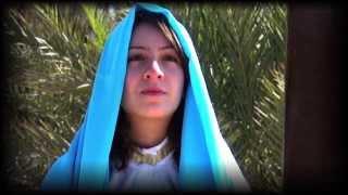 شاهد على الأحداث - العذراء مريم